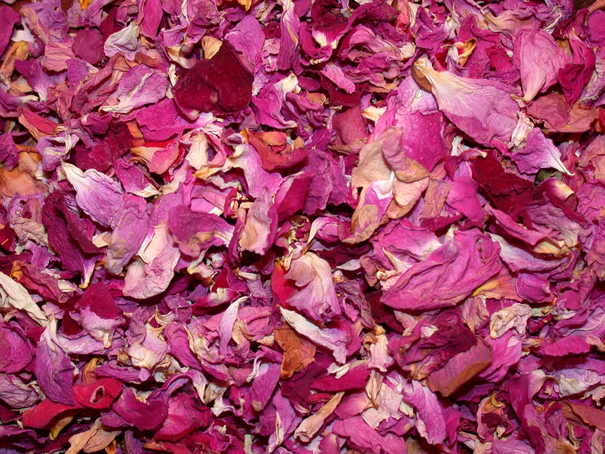 Dried rose oil flowers supplier bulgaria